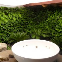 Create your own Private Sanctuary with Vertical Garden