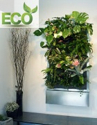 Eco Frame Series