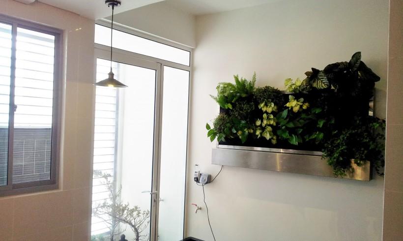 Vertical Garden in Hamsphire Place – Residence