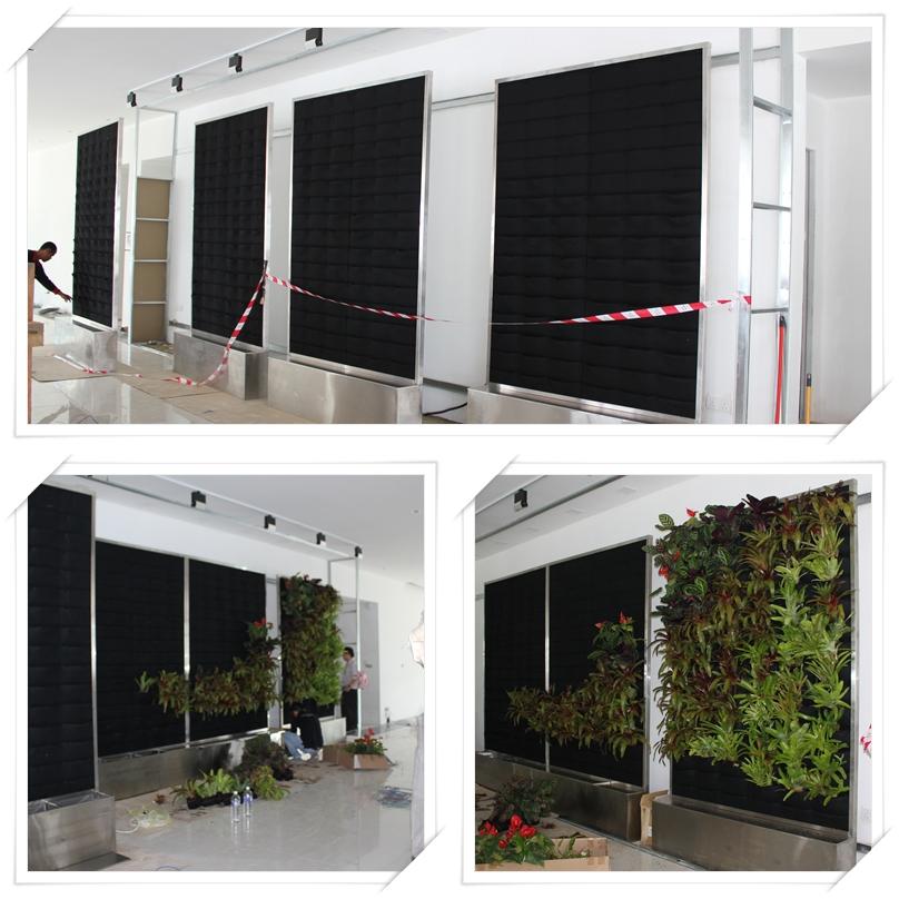 Vertical Garden Naim Holdings 4