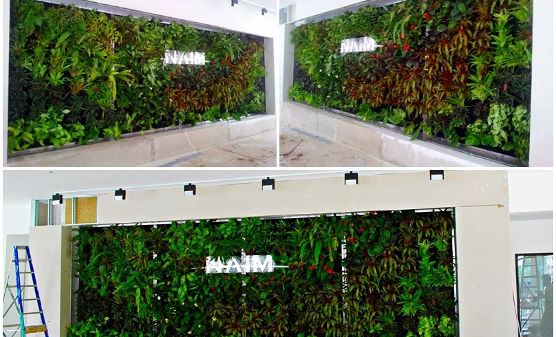Indoor Vertical Garden in Sarawak for Naim Holdings