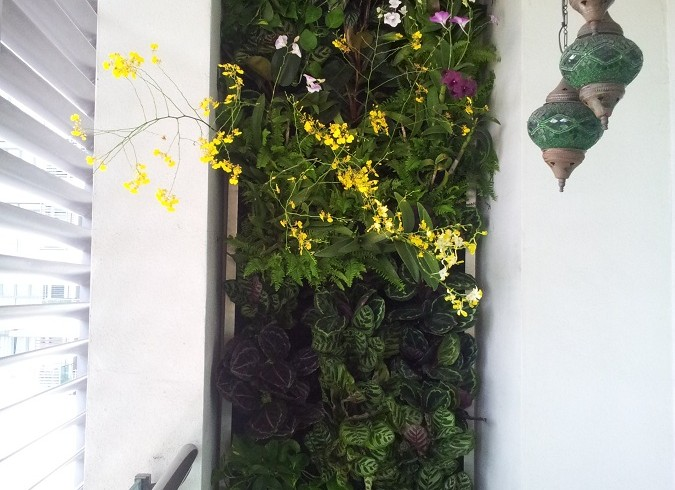 Vertical Garden for a VIP in Zehn Bukit Pantai