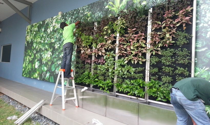 Vertical Garden Installation in Desa Park City