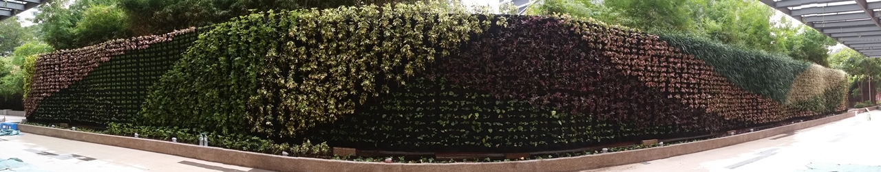Vertical Garden by Green On Wall™