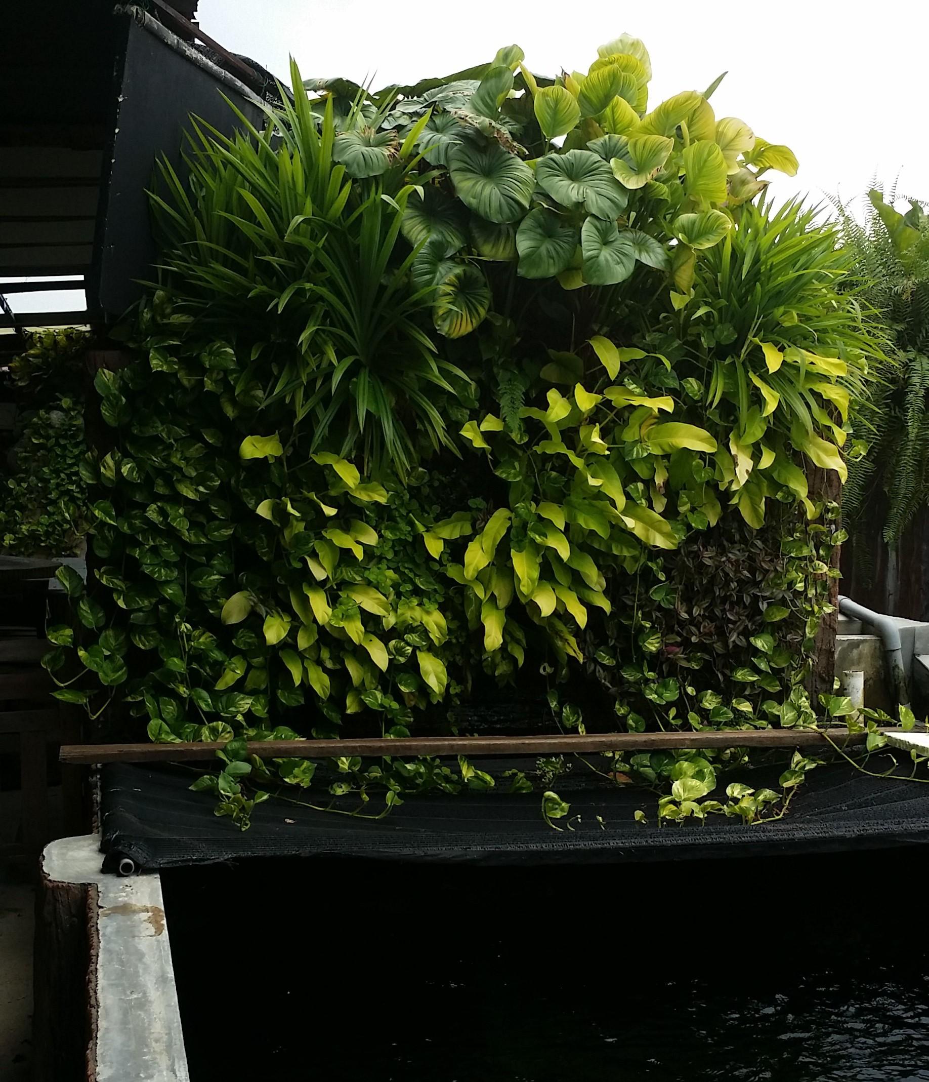 Vertical Garden by Green On Wall™