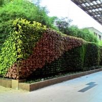 Vertical Garden in Gurney Plaza, Penang