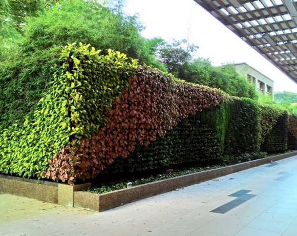 Vertical Garden in Gurney Plaza, Penang