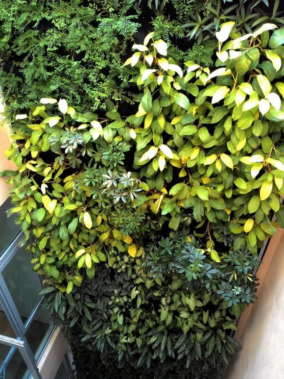3 Story Indoor Courtyard Vertical Garden