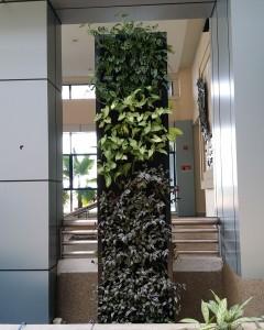 Green Wall TMRD 2