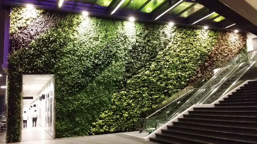 Ecosky Green Wall  4